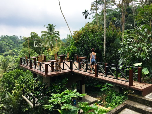 Bali AS Coffee Plantation Ubud